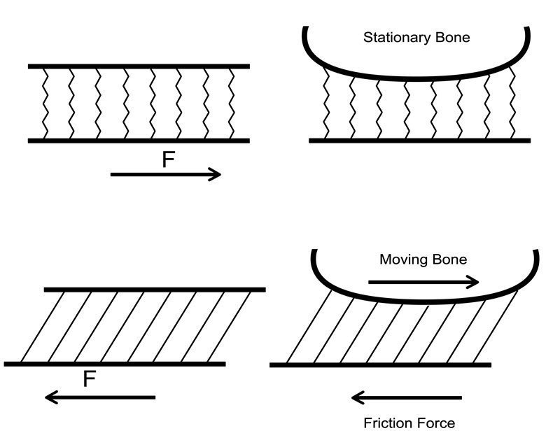 A simplified diagram representing shear. The diagram on the left is the one in Hoffman's paper. The diagram on the right is an my adaption.